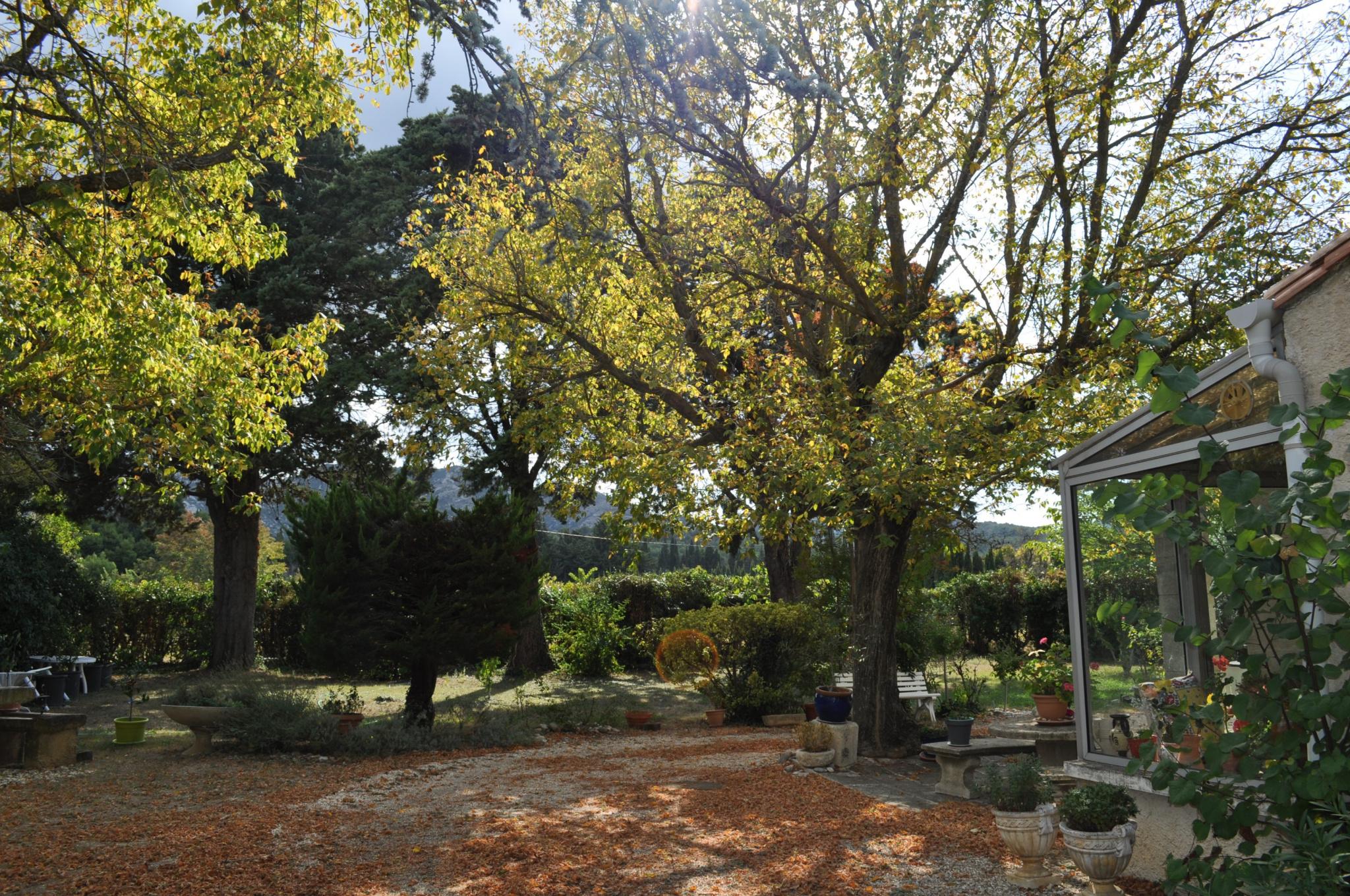 Jardin et Véranda coté entrée